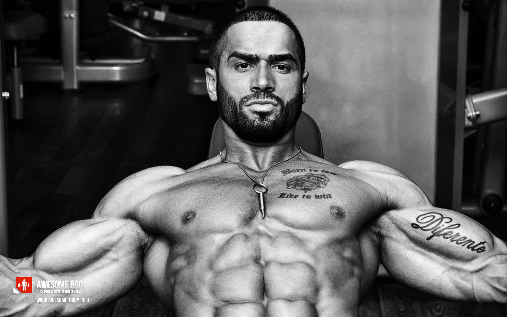 Russian Lazar Angelov Awesome Bodybuilding Sports Living Room Home