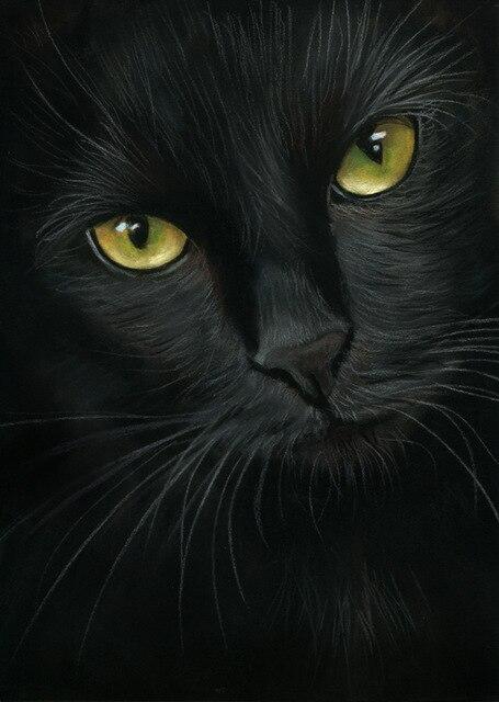 DIY diamante pintura negro gato Cruz puntada resina piedra pegado pintura cuadrado taladro diamante completo Bordado animales