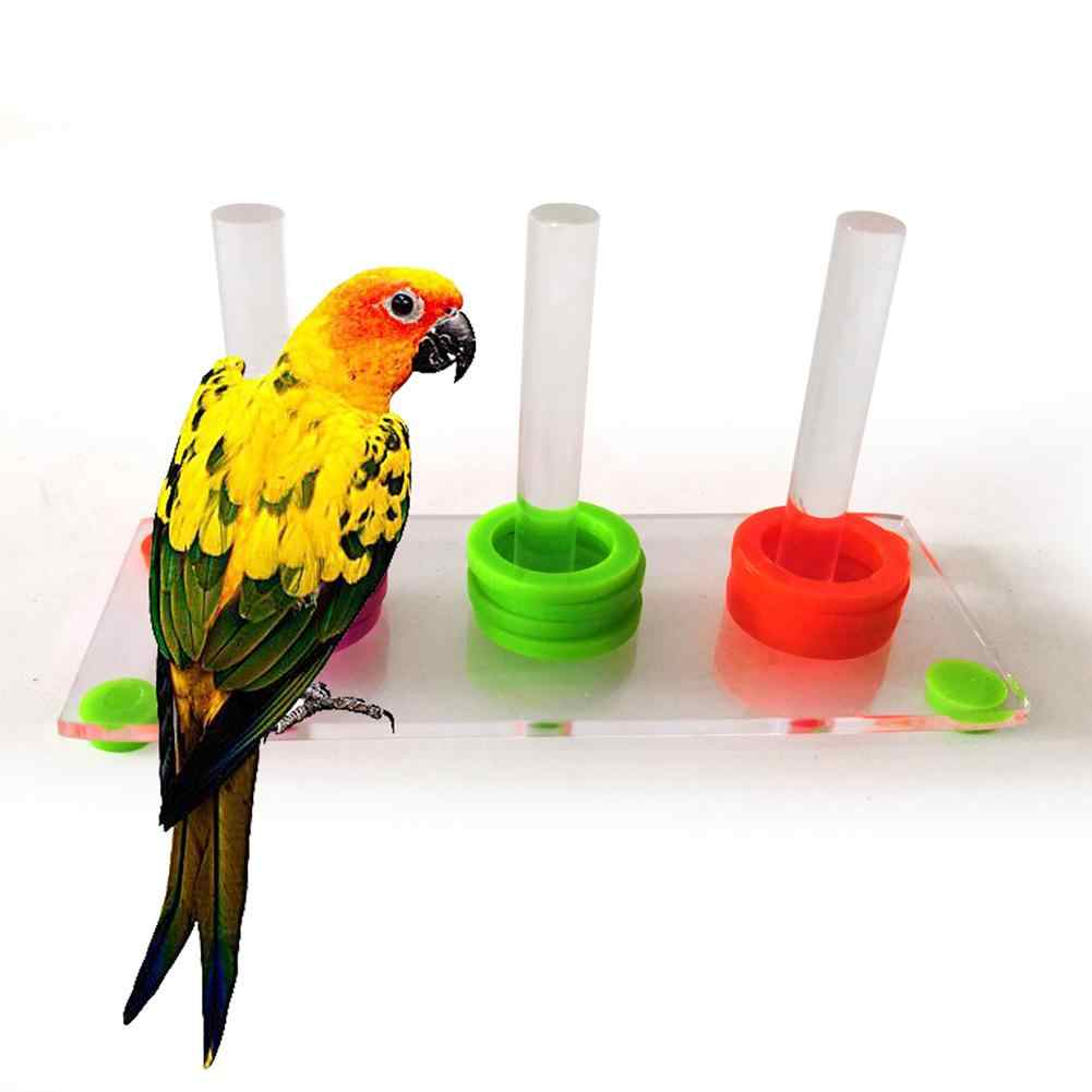 Bright Color Parrot Bird Ring Separate Training Intelligence Development Funny Pet Bird Parrot Toys Bird Supplies