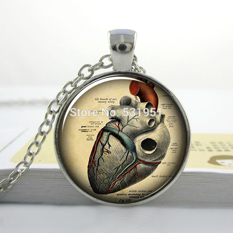 ▻3 pcs3 PCs plata collar anatómico del corazón, joyería anatomía ...
