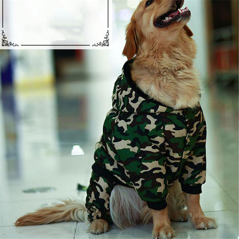 dog clothes (2)
