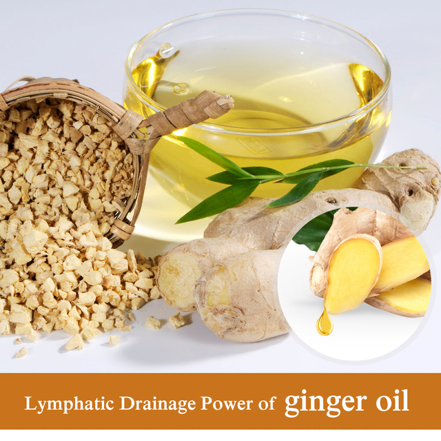 30ml Plant Therapy Lymphatic Drainage Ginger Oil Natural Anti Aging Essential Serum Face Skin Care For DropShipping 1