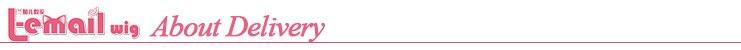 L-e-mail peruca bungo cães vadios nakahara chuuya