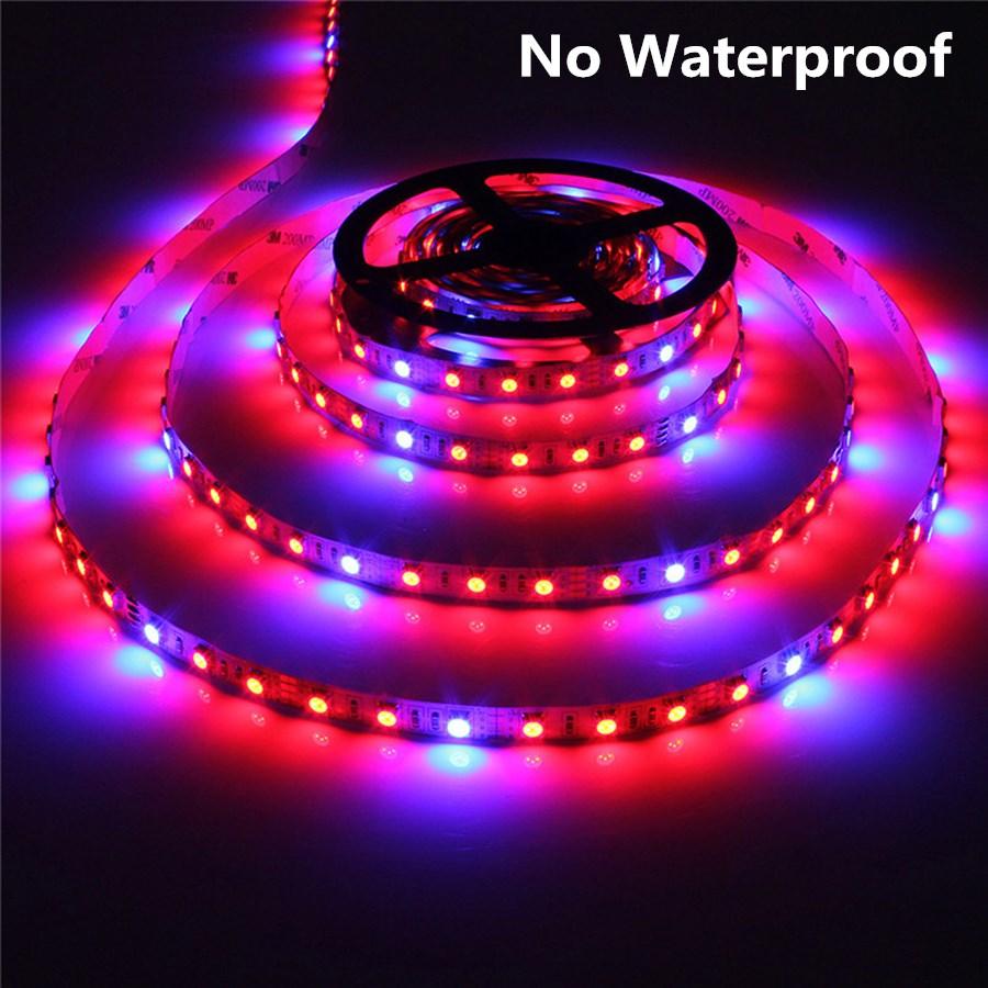 LED Grow Lights DC12V augošs LED lentes augu augšanas gaismas - LED Apgaismojums - Foto 4