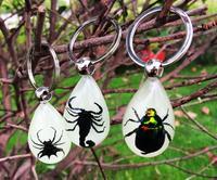 LIVRAISON GRATUITE 3 pcs scorpion ptine lueur dans l'obscurité design keychain
