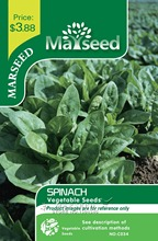 Marseed Space-saving 200 Spinach Vegetable Seeds Impressive Rustic Garden