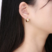 Earrings Stainless Steel Model 8