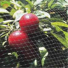 WCIC 4x6m Nylon Anti Bird Netting Green Pond Net Crops Fruit Tree Vegetables Protection Garden Protective Mesh Pest Control