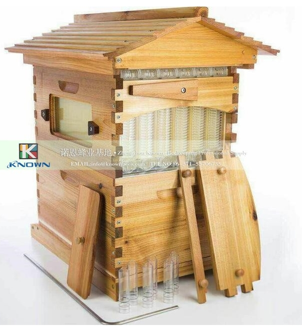 7 pcs franes Bee honey self flowing Beehive 6 frames reversible honey extractor for bee keeping