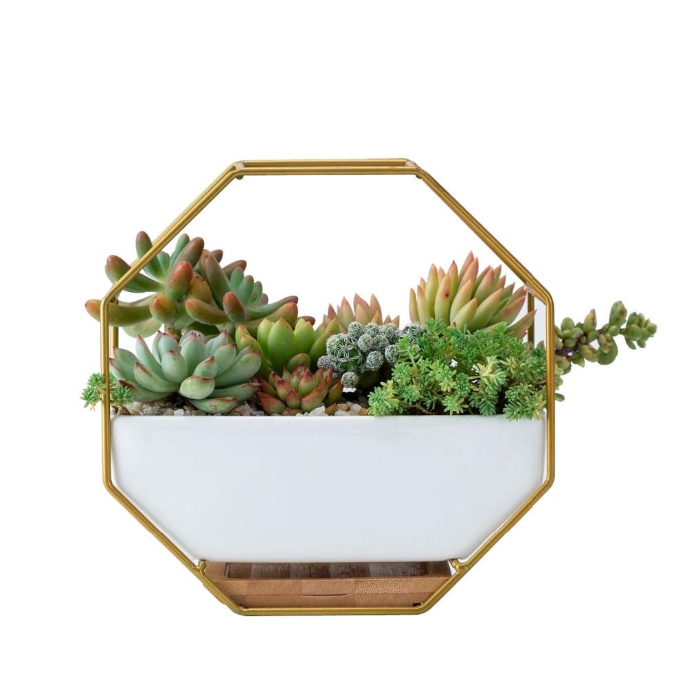 225 & Hanging Succulent Flower Pots Ceramic Flowerpots Stand Holder Black Gold Iron Rack Bamboo Tray Desktop Geometric Cactus Planter