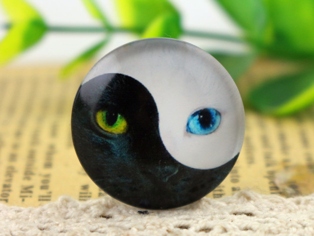 New Fashion  5pcs/Lot 25mm Handmade Photo Glass Cabochons Cat F5-16