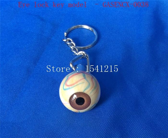 Eye lock key model of the human body - GASENCX-0038