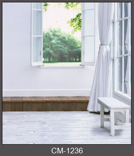 Window to scenery photography background window photo backdrops for photo studio funds props CM-1236 companion to mutual funds
