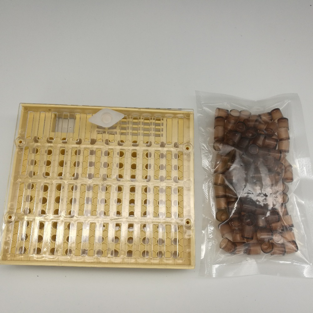 Beekeeping Queen Rearing Cupkit Box Brown Cell CupsSystem Cupularve Tools Bee Keeper Tools Apiculture Supplier