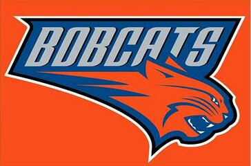 <font><b>Charlotte</b></font> <font><b>Bobcats</b></font> Flag 3ft x 5ft Polyester <font><b>Banner</b></font> with 2 Metal Grommets