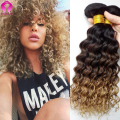 8A Ombre Tissage Malaysian Virgin Hair 4 Bundles Deep Wave Ombre Human Hair Curly Hair Meches Bresilienne Lots Deep Curly Weave