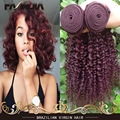 Cheap Brazilian Curly Virgin Hair Bundles 3 Pcs/Lot 99J  Color Human Hair Extension Burgundy Brazilian Virgin Hair Curly Wave