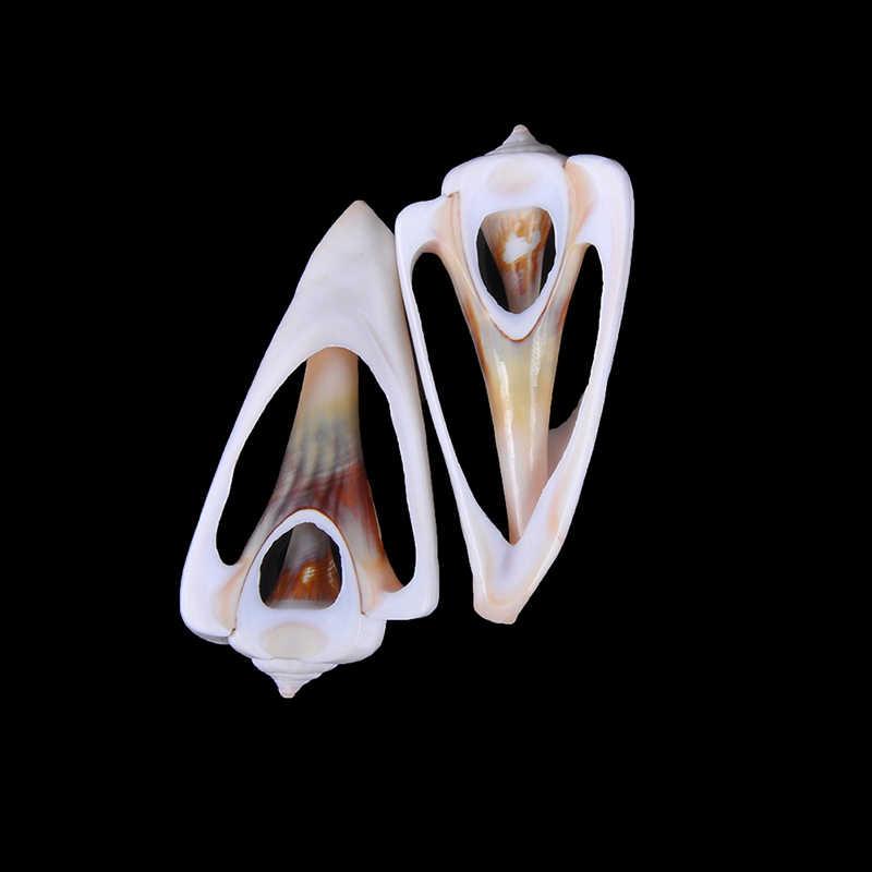 5 個 4-6 センチメートル巻き貝ビーズ貝 Cowrie 部族ジュエリークラフトアクセサリー穴 DIY 小型バルクカットビーチ海の天然シェル