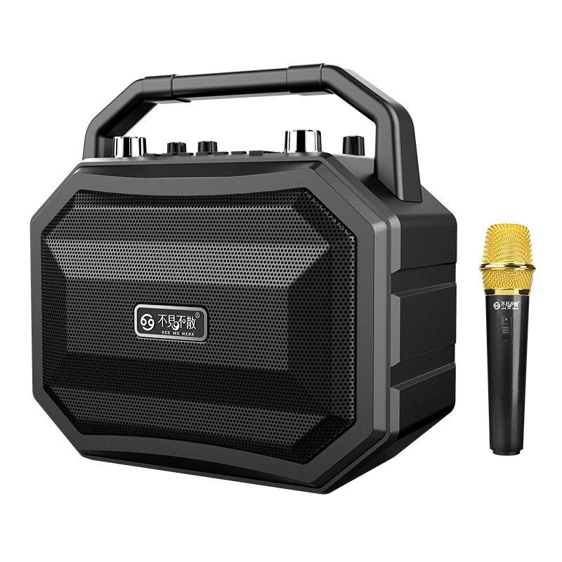 Mifa M520 Bluetooth Динамик с Беспроводной микрофон мобильный Беспроводной караоке Динамик СПЦ Беспроводной стерео Главная Вечерние Динамик