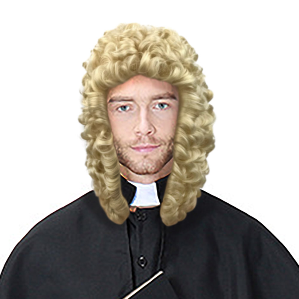 Greaser Grey Wig For Hair Accessory Fancy Dress Male Carnival Men Mens