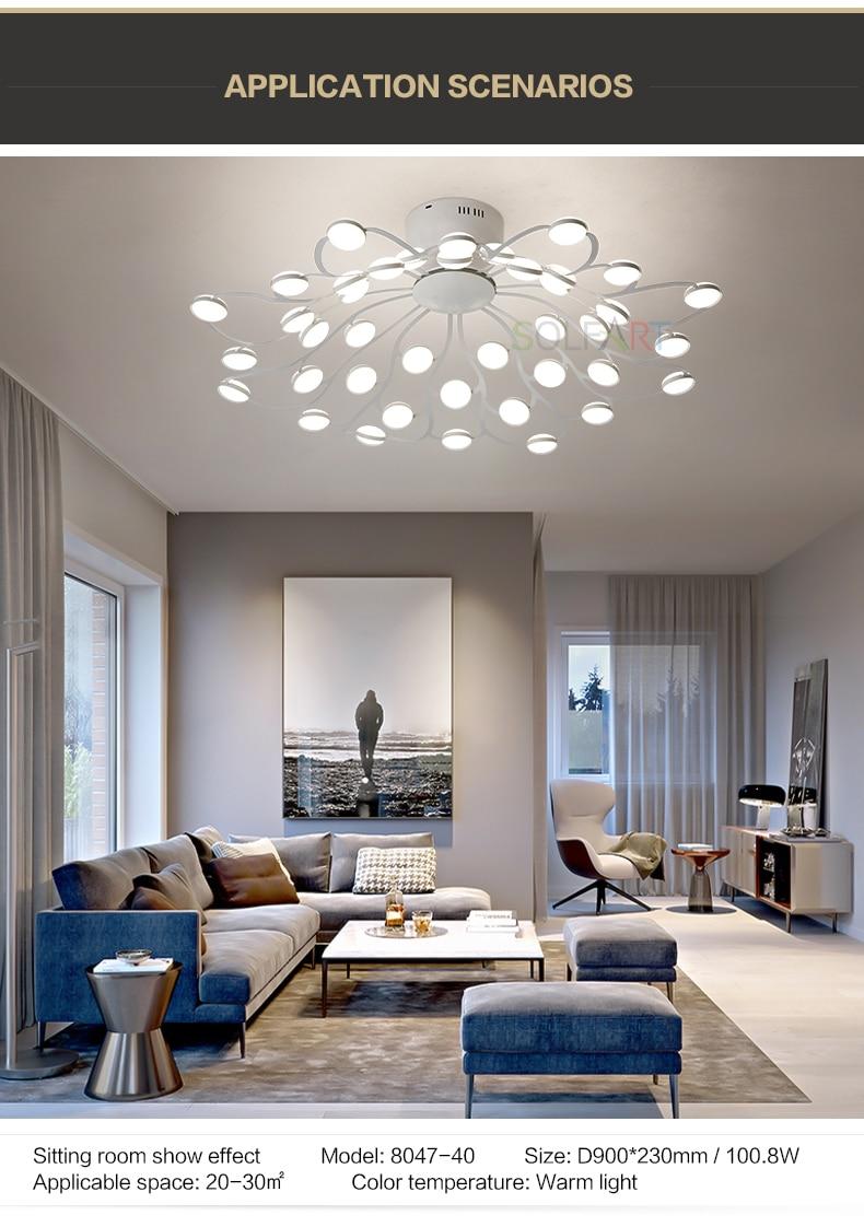 8047-LED Ceiling Light Sconce Luminaria Chandelier Ceiling Avize Light Fixtures Ceiling Lamp_03