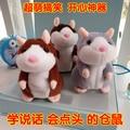 Хомяки будет научиться говорить мышонок куклы плюшевые игрушки, куклы записи умный, творческий подарок