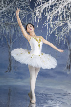 professional ballet costumes  nutcracker Clara costume Sleeping Beauty, Paquita, Don Quixote, Coppelia