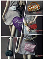 5pcs/lot Genuine case for barbie Doll Collector's Edition Genuine fashion bag satchel wave packet