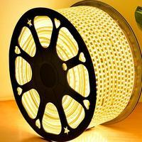 AC 220V 1M 60LED IP65 Waterproof 5050 SMD Flexible LED Strip light white / warm white / blue / green / red / led lamp Tape