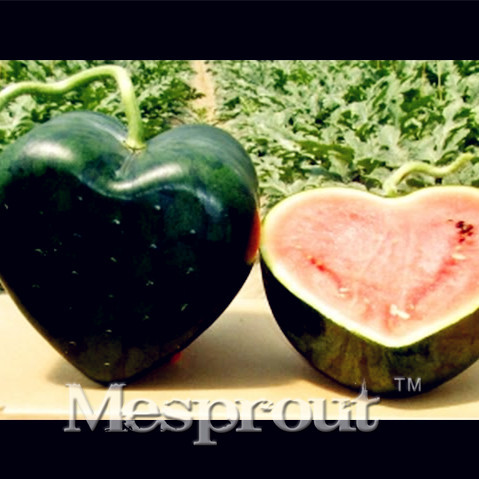 Best Selling! 30PCS Rare Fruit Heart Shaped Watermelon Seeds Fruit Tree  Seeds For