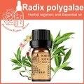 100% чистый завод Травяные медицины масла Radix Polygalae травяное масло 5 мл эфирные масла традиционная Китайская медицина масло