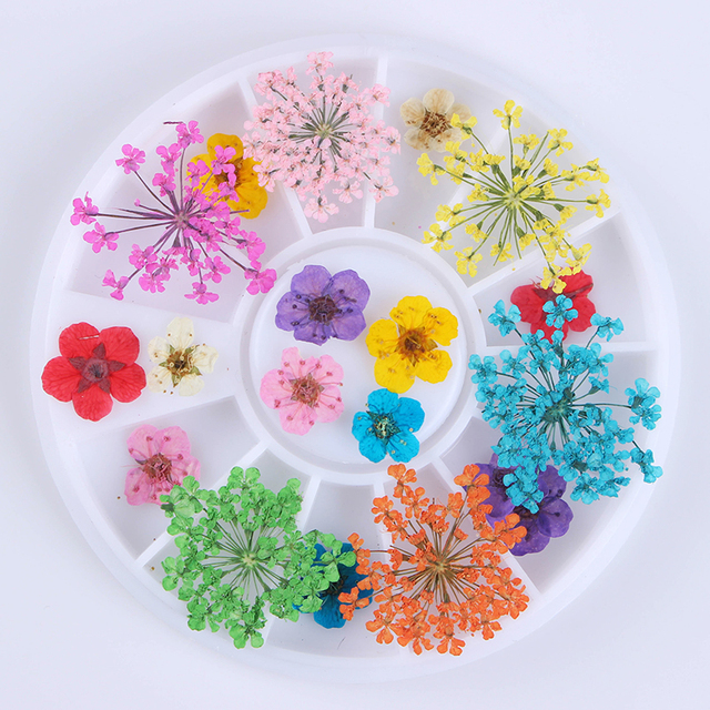 1 Box Mixed Dried Flower Nail Decoration Diy Preserved Manicure Art