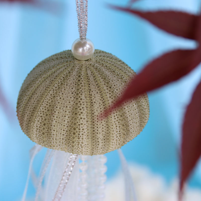 Us 15 19 5 Off Free Shipping 4pcs Lot Green Sea Urchin Christmas Pendant Drop Ornaments Natural Shell Conch Handmade Party Diy Decor In Pendant