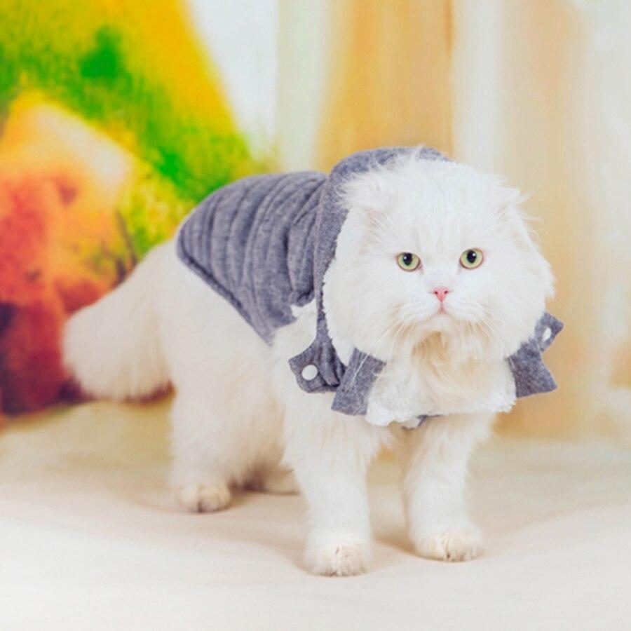 ₩Traje de mascota ropa Gatos desgaste Abrigos novedad blusa otoño ...