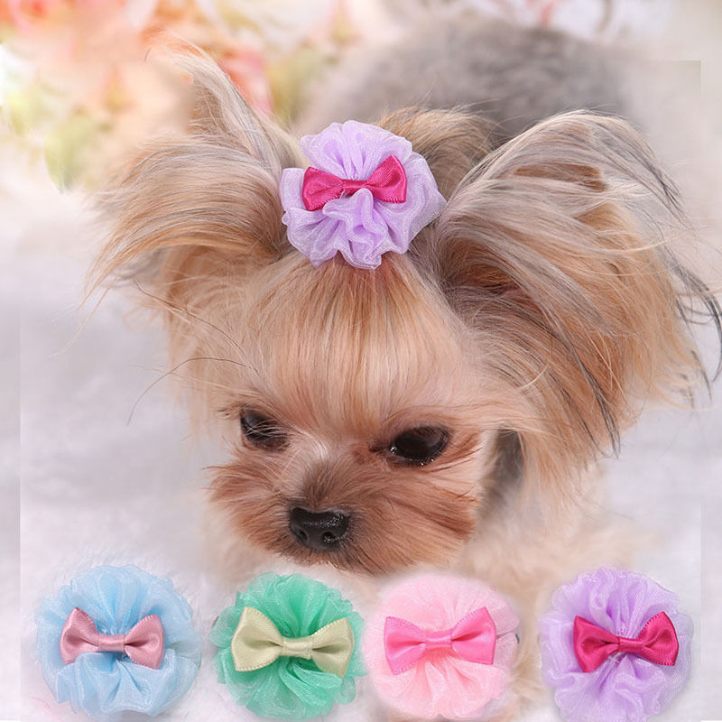 5 PCS Pretty Tulle Pet Dog Yorkie Hair Bows Accessories