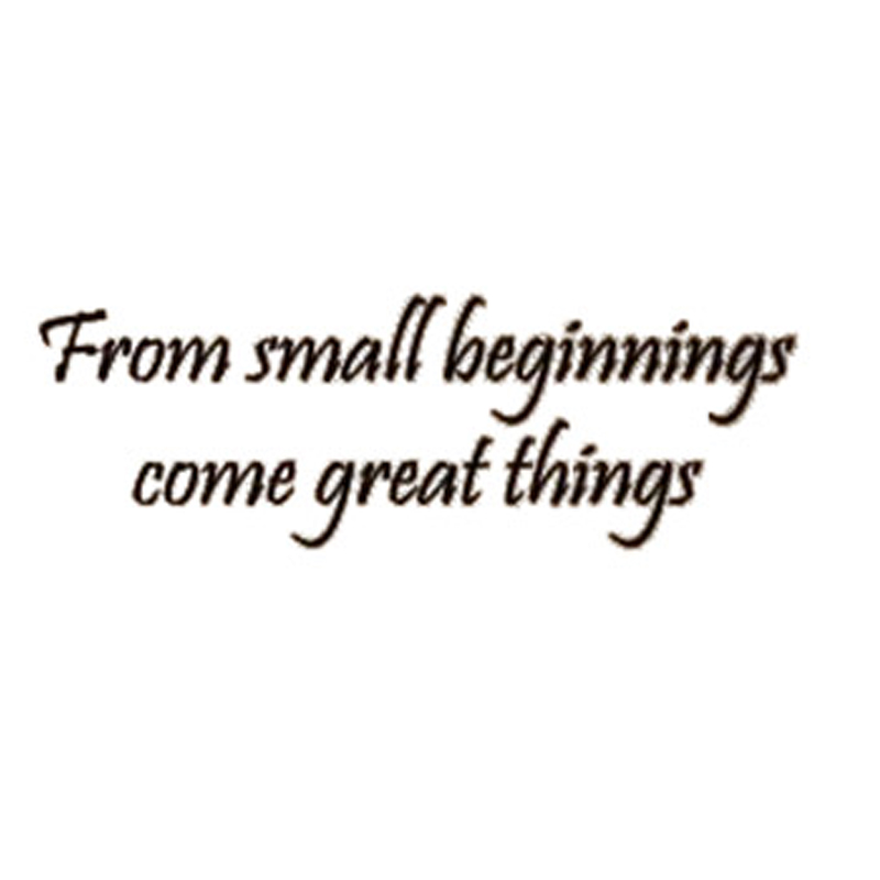 Great Small Quotes Cool Cacar From Small Beginnings Come Great Things Inspirational