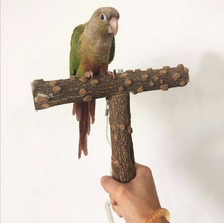 AIMA rutschfeste Holz Papagei Stehen Barsch Stehen Vogelkäfig ...