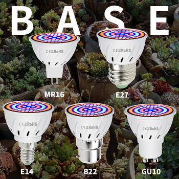 Phyto Led B22 hydroponicznych wzrost światła E27 Led rosną żarówki MR16 pełne spektrum 220V lampa UV roślin E14 kwiat sadzonka Fitolamp GU10 tanie i dobre opinie SPSCL ROHS PL001 4 8cm Plant Greenhouse Lights Żarówki led 220 v Rosną światła Two Years Warranty China 48leds 60leds