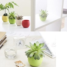 Colourful Mini Flower Pot for succulent plants Round Plastic Plant Flower Pot Garden Home Office Decor Planter #K400Y#