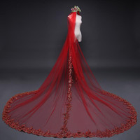 Beauty Red Bridal Veils Lace Cathedral Wedding Veils With Combs One Layer Appliques Pleats Bridal Veil