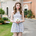 2016 High quality Slim High Waist Pleated Summer Women Fashion Brand Sleeveless Female Sheel Print Sweet Lovely One-piece Dress