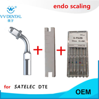 Ultrasonic scaler dental endo tip wrench endo file stainless steel U file for Woodpecker DTE SATELEC GNATUS ultrasonic scaler