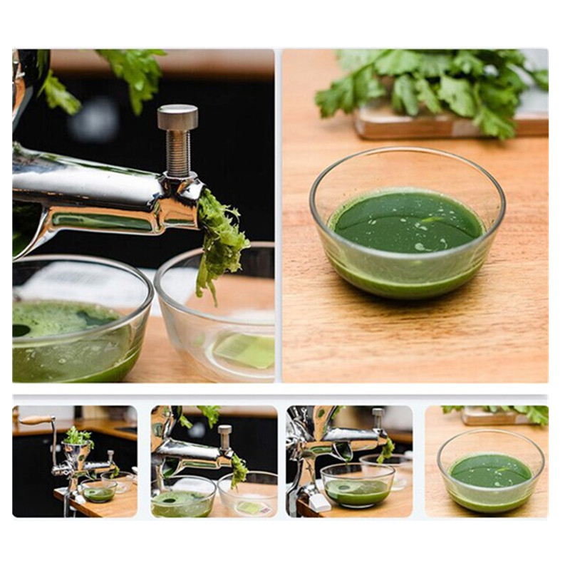 Mini manual wheat grass fruit vegetable juicer juice extractor juicing machine glantop 2l smoothie blender fruit juice mixer juicer high performance pro commercial glthsg2029