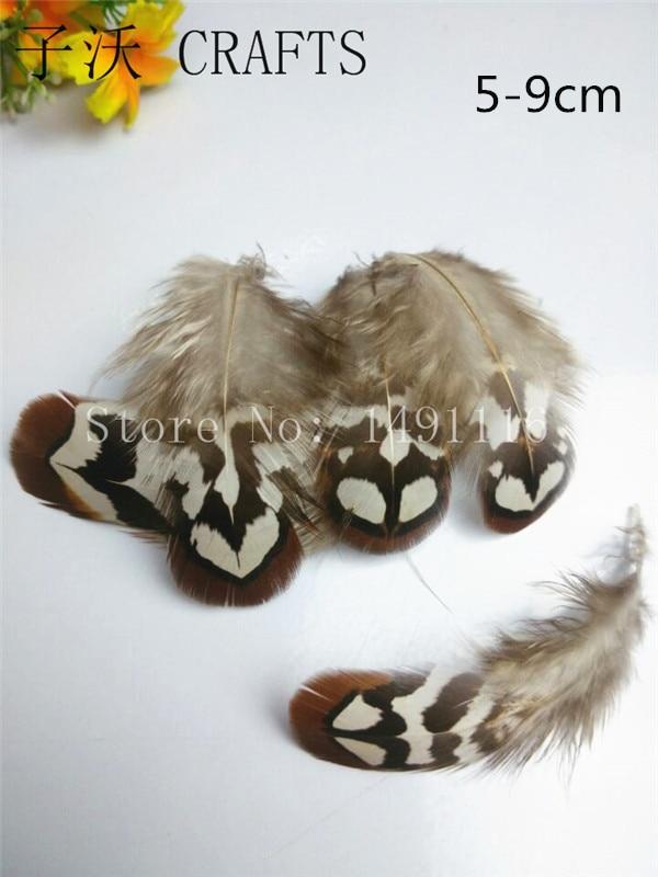 Chaud! 500 pc 5 8 cm plumes de faisan naturel de qualité, décoration de bijoux à bricoler soi même-in Plume from Maison & Animalerie    1