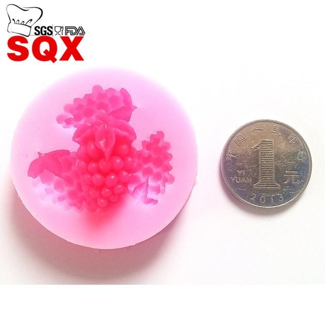 https://ae01.alicdn.com/kf/HTB1mRG9LXXXXXbkXpXXq6xXFXXXA/Wholesale-3PCS-Mini-grapes-fruit-Shape-Fondant-Icing-3D-Cake-Mold-Sugar-Craft-Cake-Decorating-Tools.jpg_640x640.jpg