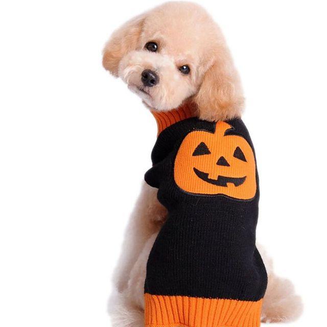 Halloween calabaza patrón perro suéter hecho punto Suéteres para ...
