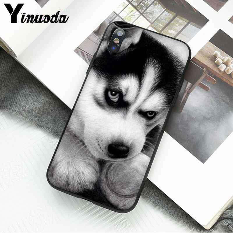 Yinuoda Animal Husky puppy dog TPU Soft Silicone Phone Case Cover for iPhone 6S 6plus 7 7plus 8 8Plus X Xs MAX 5 5S XR