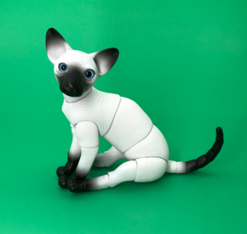 BJD SD doll 1/6 Sphynx A birthday present High Quality Articulated puppet Toys gift Dolly Model nude Collection