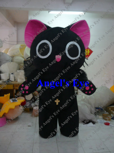 Chatte photos Galeries