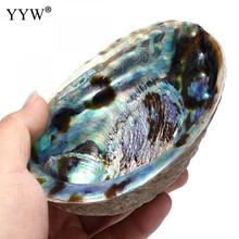 "Купить с кэшбэком 132x95x36mm Large Abalone Shell(4-6"") Rainbow Multicolor Oval Smudge Bowl With Velvet Pouch Hole Shell Jewelry Holder For Gift"